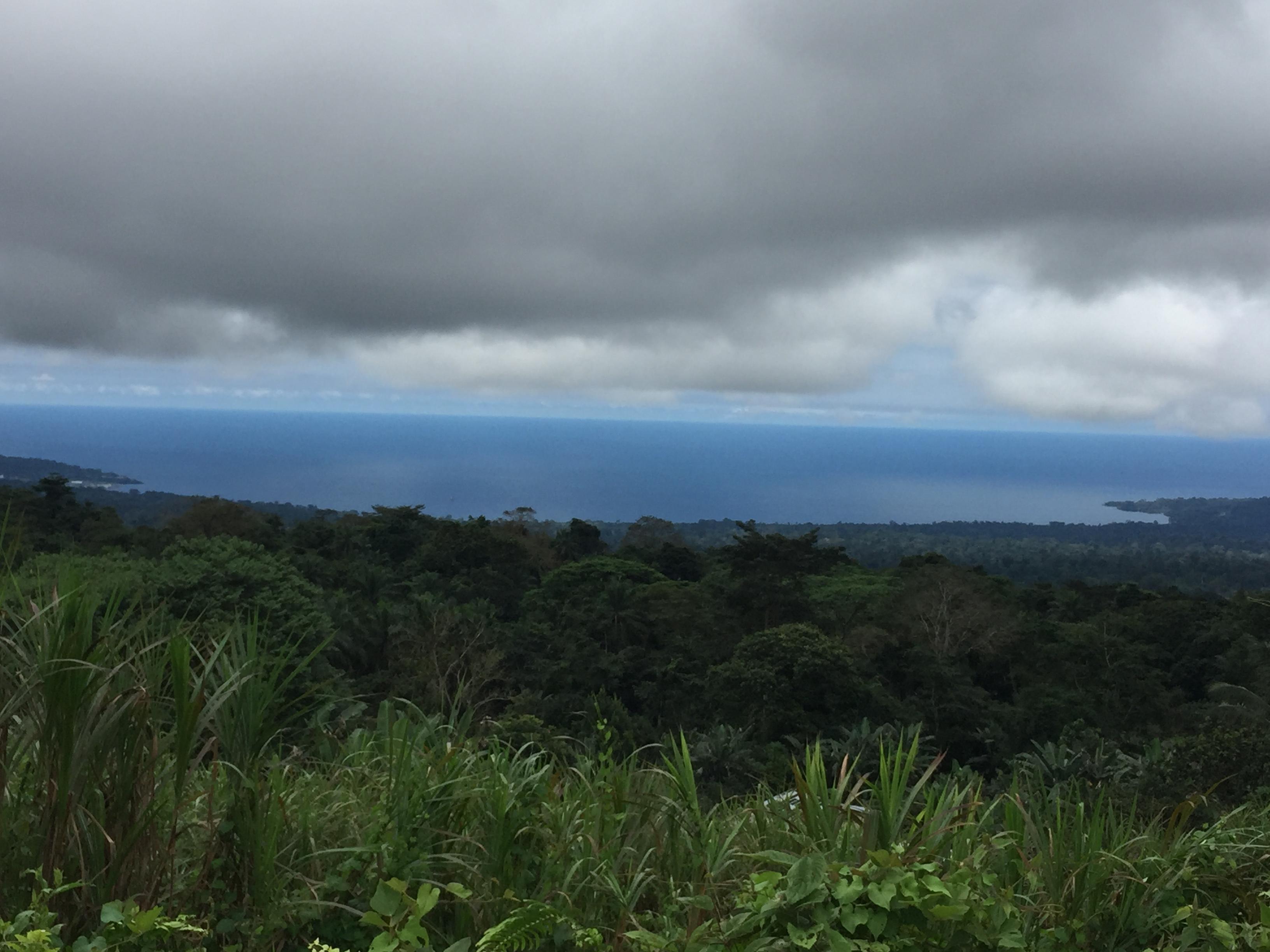 lush vegetation Bioko Island south